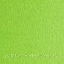 Бумага для дизайна Colore Fabriano A4 (21*29.7) №30 200г/м2 мелк.зерно Verde pis