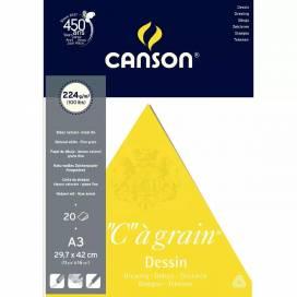 Альбом для эскизов Canson C a Grain 224г/м A3 20л склейка
