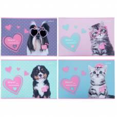 Альбом для рис-я Kite 12л/120 скоба SP21-241 Studio Pets софт тач